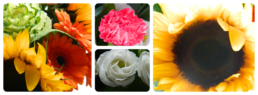 The Flower Effect, #flowereffect, Funny How Flowers Do That, sunflower, bunch of flowers, yellow, carnation,