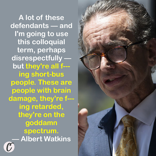 A lot of these defendants — and I'm going to use this colloquial term, perhaps disrespectfully — but they're all f---ing short-bus people. These are people with brain damage, they're f---ing retarded, they're on the goddamn spectrum. — Albert Watkins, attorney for Jacob Chansley, also known as the QAnon Shaman