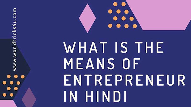 what is the means of entrepreneur in hindi ?,what is an entrepreneur,characteristics of the entrepreneur,types of an entrepreneur,definition of an entrepreneur