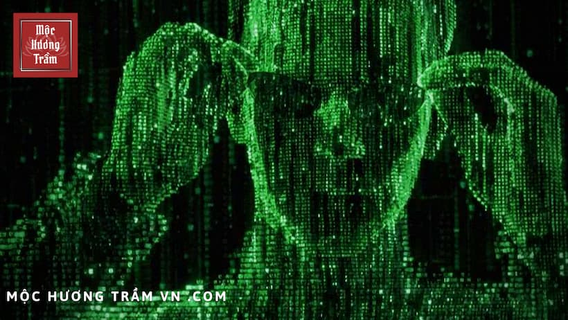 """Transforming lives reincarnation according to the perspective of science - """"The Matrix"""""""