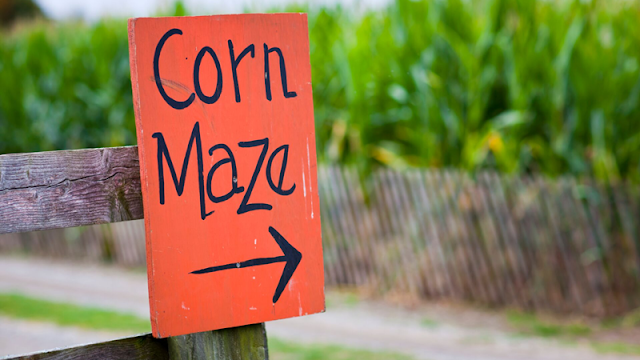 orange and black sign pointing to the corn maze entrance