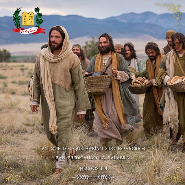 PASAJE BÍBLICO -  HECHOS 8;04