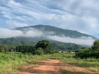 Chuyên bán đất nông nghiệp có vườn trái cây xã Xuân Tâm