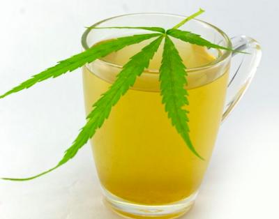 كيف تصنع شاي القنب الهندي
