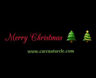 Merry Christmas from carenaturele.com