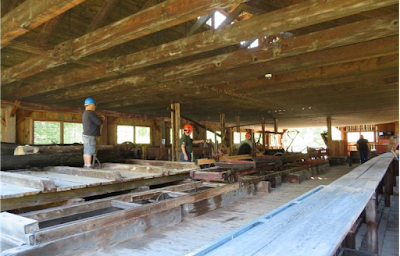 Sawmill crew operating equipment for visitors
