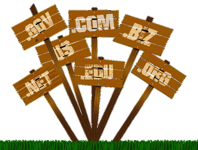 Why do you need to buy domain name?