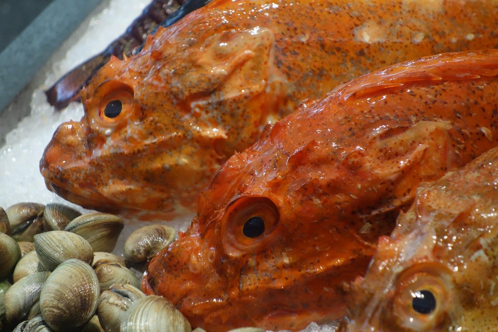 Barnes Barnes Fish Heads Greatest Hits