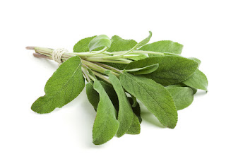 Sage - belly fat diet recipes