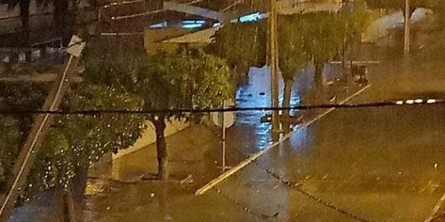 المهدية : سقوط أشجار وأعمدة كهربائية جراء الرياح القوية والأمطار !