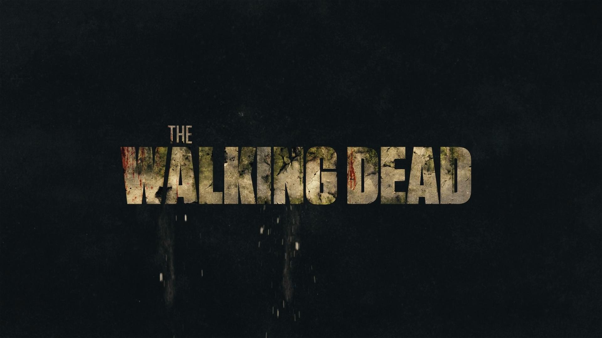 The Walking Dead Temporada 11 Parte 1 (2021) 1080p WEB-DL Latino