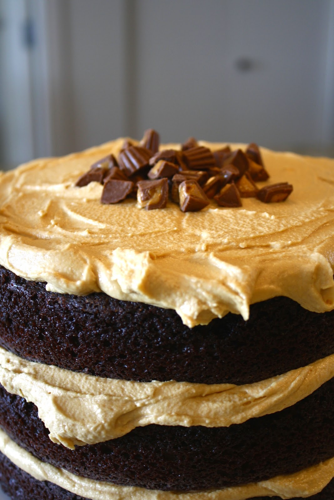 Reese's Peanut Butter Cake - Rich and delicious chocolate cake with a whipped peanut butter frosting and mini Reese's peanut butter cups. | livforcake.com