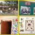 The Manikya Lal Verma Tribal Research and Training Institute (TRI) Udiapur माणिक्यलाल वर्मा आदिम जाति शोध एवं प्रशिक्षण संस्थान, उदयपुर