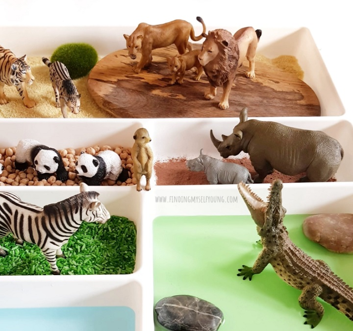 zoo animal figurines in a small world tray