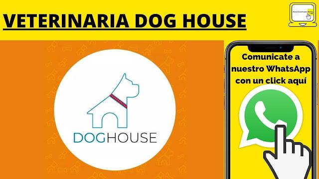 VETERINARIA DOG HOUSE