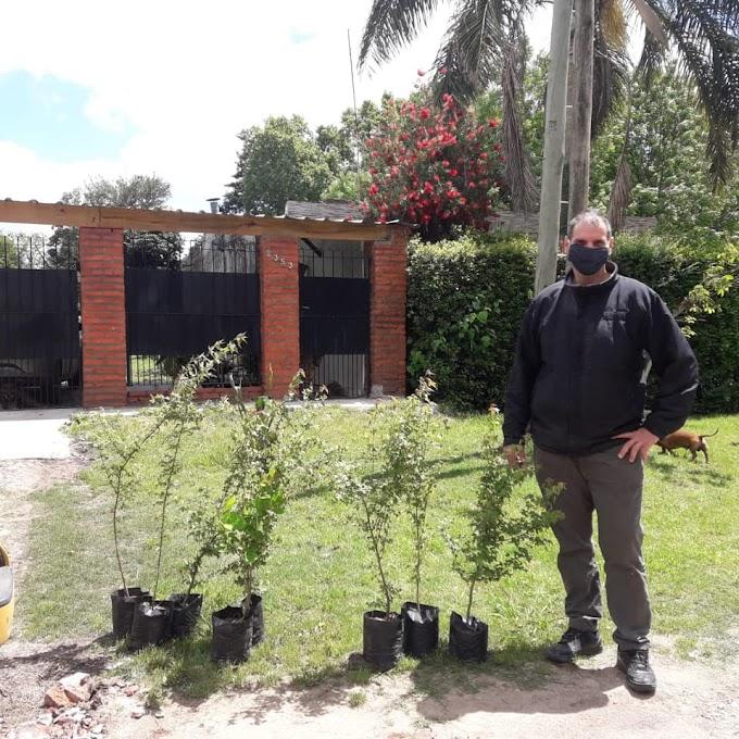 El Municipio entregó árboles a vecinos de Pontevedra y Libertad