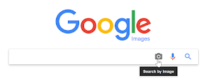 Screenshot of Google Search by Image feature