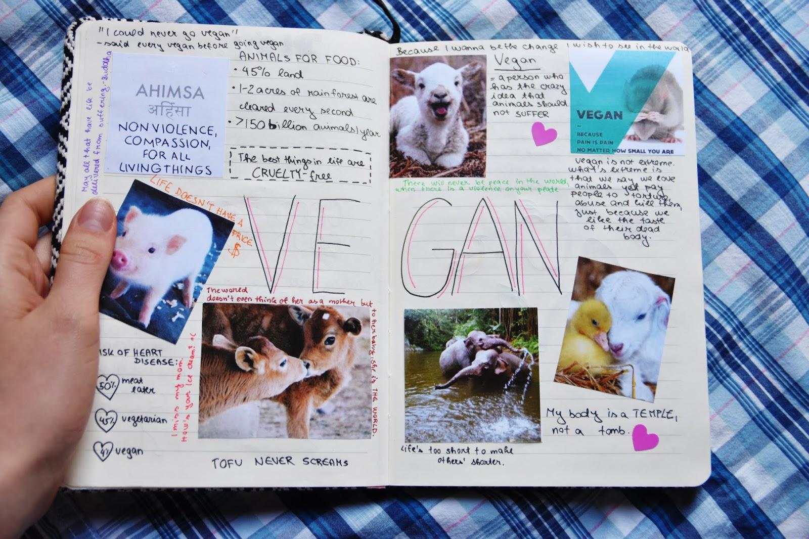 vegan motivační deník