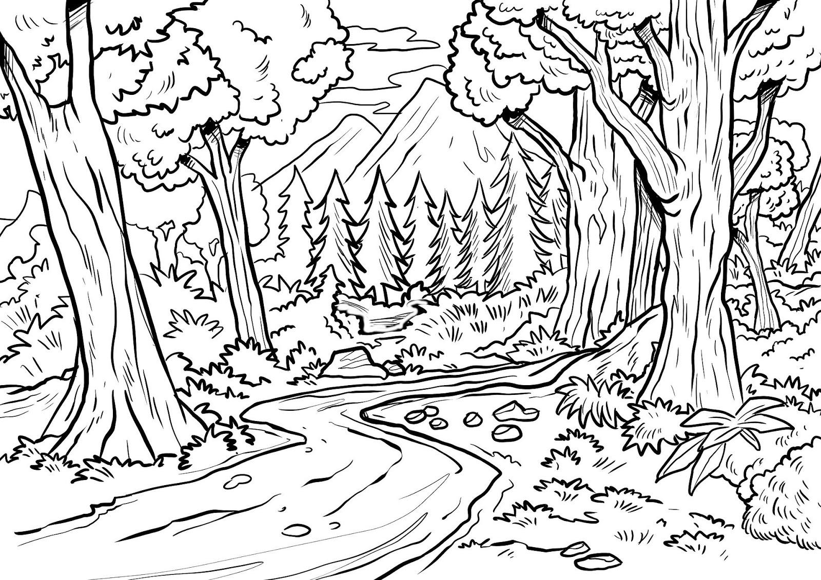 Ausmalbilder: Wald - Mottes Wunderwelt