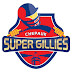 TNPL Chepauk Super Gillies Team Squad - Tamil Nadu Premier League 2016