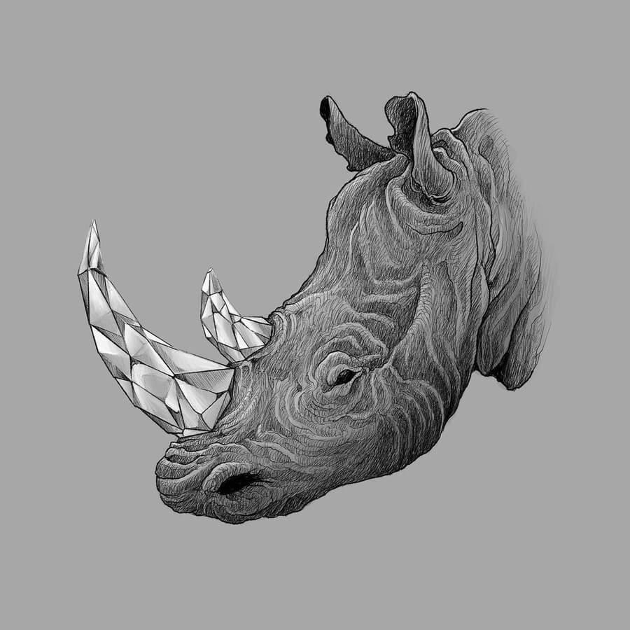 07-Rhino-Kerby-Rosanes-www-designstack-co