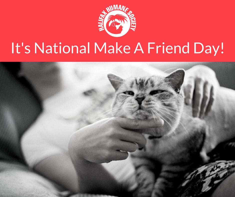 National Make a Friend Day Wishes For Facebook