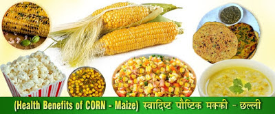 पौष्टिक स्वादिष्ट मक्की भुट्टा Health Benefits Corn in Hindi
