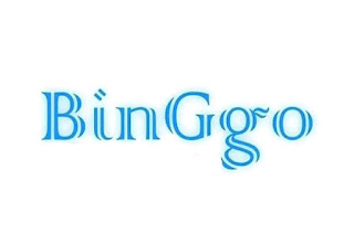 About-us-how-to-binggo