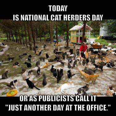 National Cat Herders Day Wishes Photos