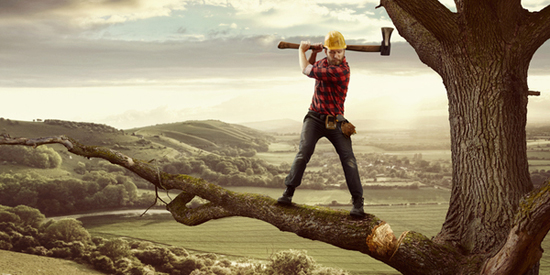 Creative photo manipulations