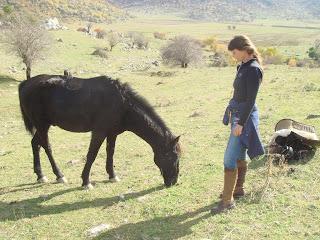 Albania, riitta reissaa