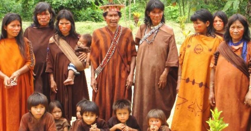 MINEDU oficializa el alfabeto de la lengua originaria Matsigenka (R. M. N° 706-2018-MINEDU) www.minedu.gob.pe