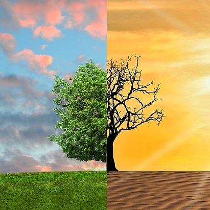 co2 e riscaldamento globale