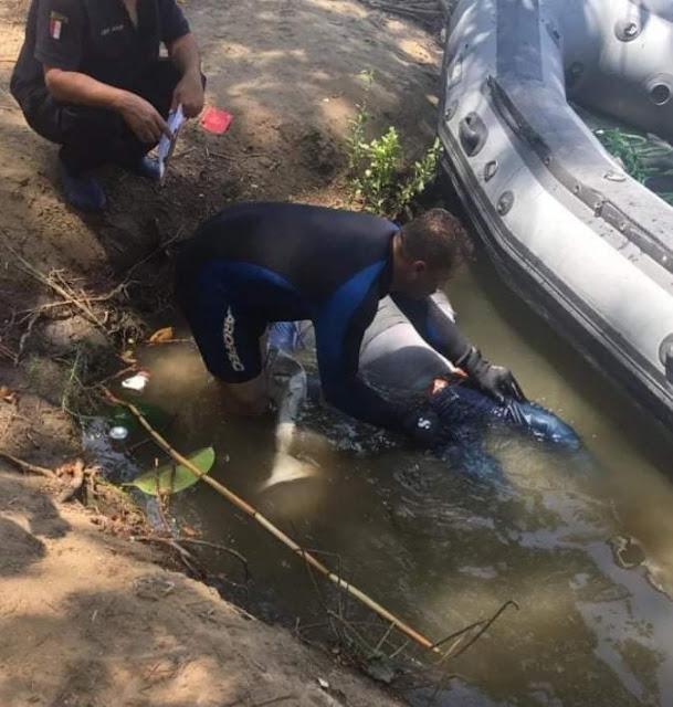 مصرع غطاس غرقا أثناء فحصه بلاغ فى نهر النيل بسوهاج