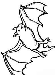 Nocturnal Animals Coloring Pages : Bats Flying