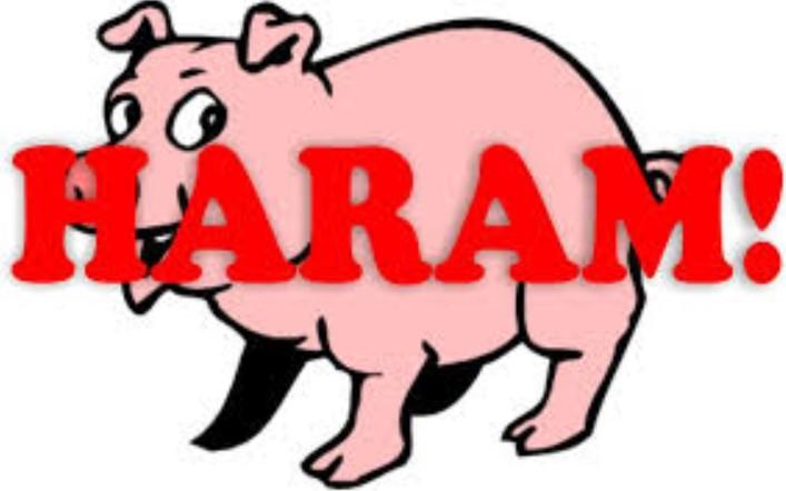 Ini Alasan Kenapa Allah Menciptakan Babi yang Diharamkan bagi Manusia