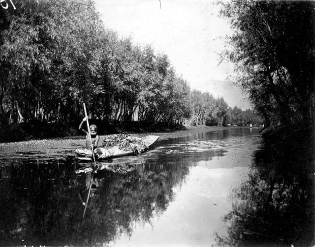 Fotografías antiguas Cachemira, India (1890-1910)