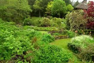 a Welsh hillside garden in Nant Y Bedd