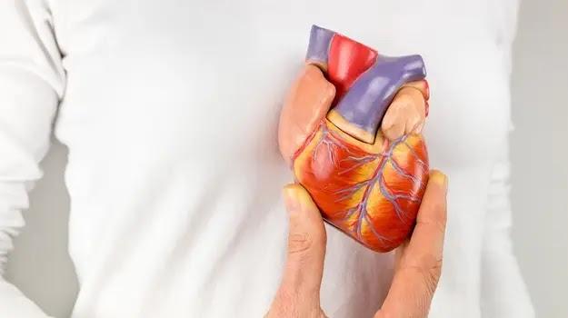 أعراض عدم انتظام ضربات القلب