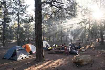 Camping in Gesellschaft