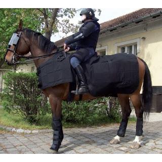 Chevaux trop protégés par leurs cavaliers.