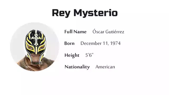 Rey Mysterio Biography History Net Worth And More