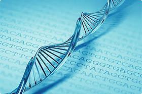 DNA - cấu trúc photon của nó -  Khám phá DNA của Nga