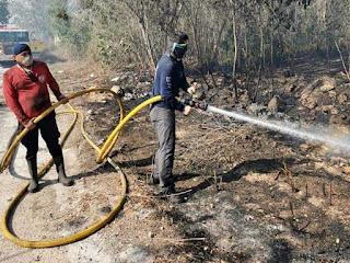 incendios-forestales-en-benito-juarez