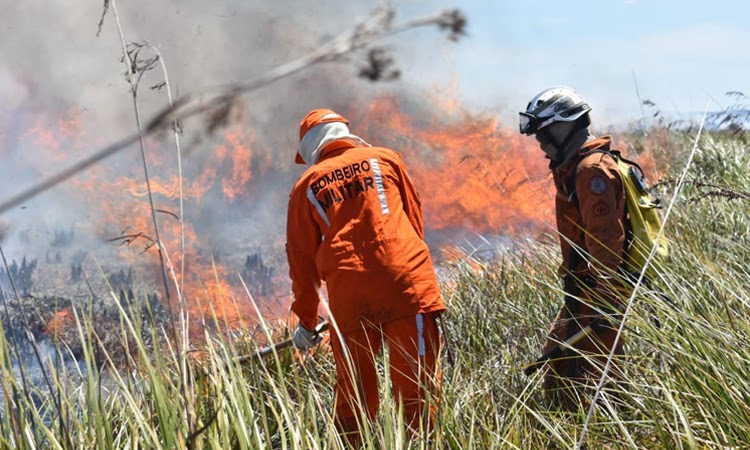 Corpo de Bombeiros lançará operação contra incêndios na Bahia