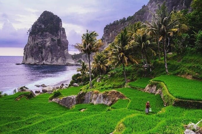 5 Wisata Pantai di Pacitan Jawa Timur