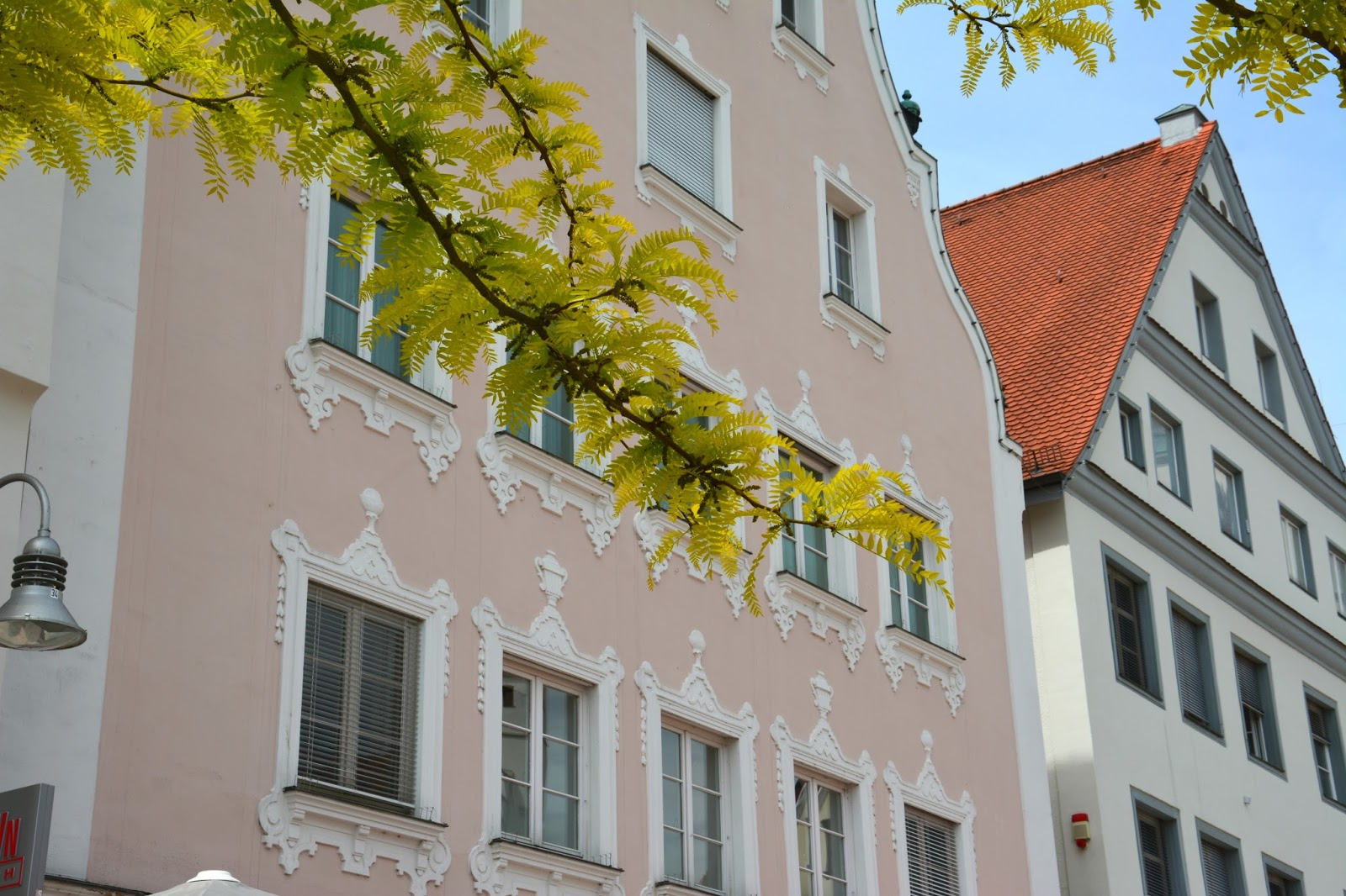 Branch with green leaves in front of pink house facade