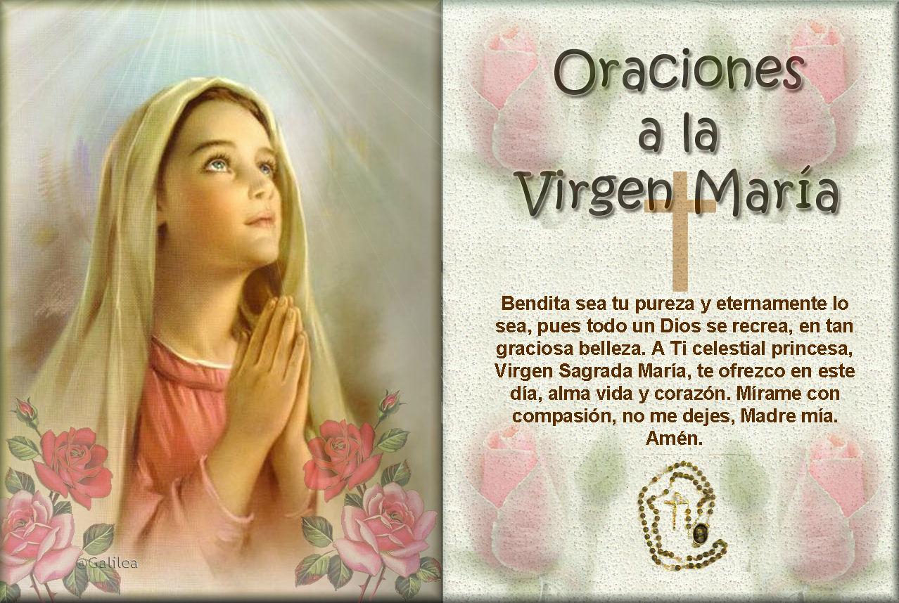 Bendita Eres virgenes Pinterest Bendito, Virgencita