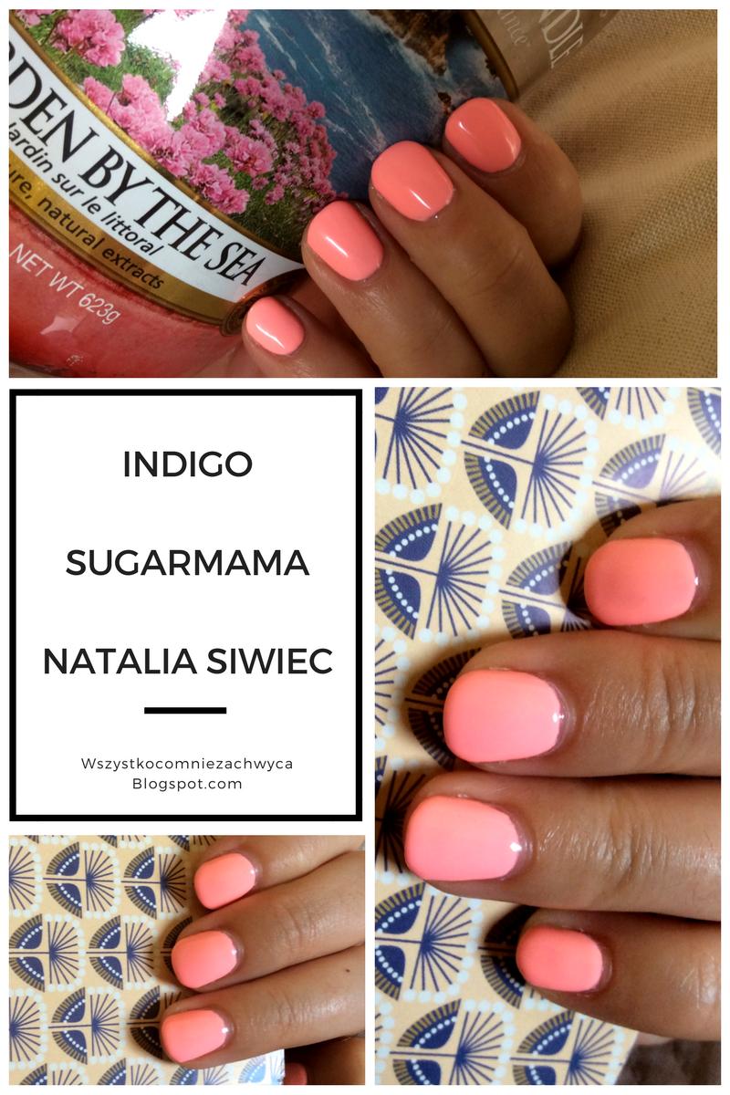 Indigo Sugarmama, Natalia Siwiec lato 2017