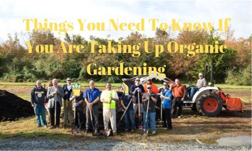 Things You Need To Know If You Are Taking Up Organic Gardening